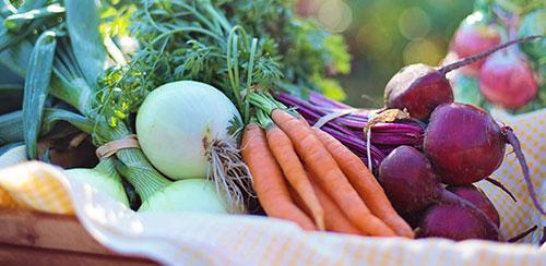 Why Older Women Should Eat Their Vegetables